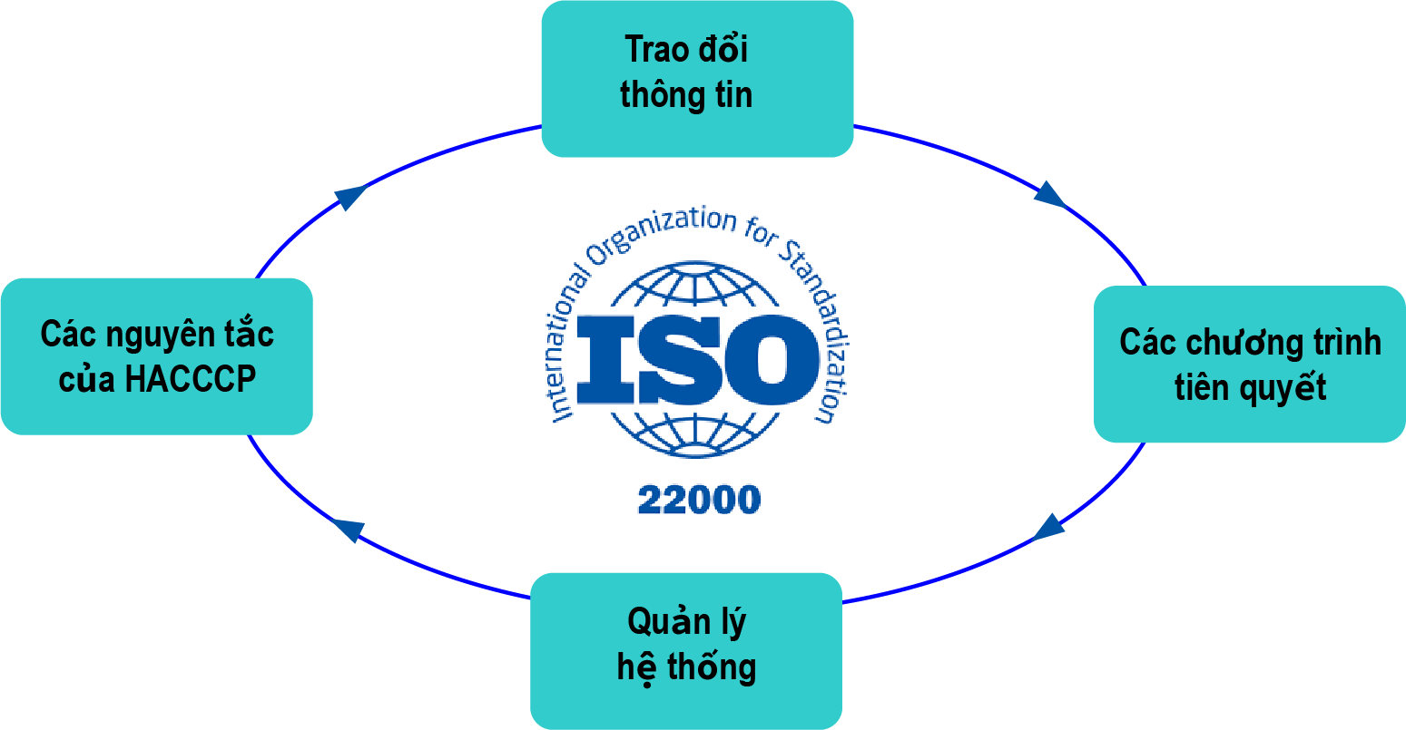 ISO 22000 là gì các yếu tố chính